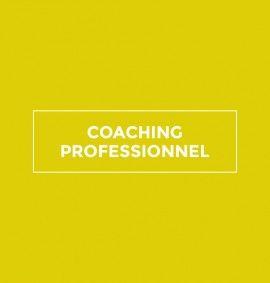 FICHE-COACHING-PROFESSIONNEL